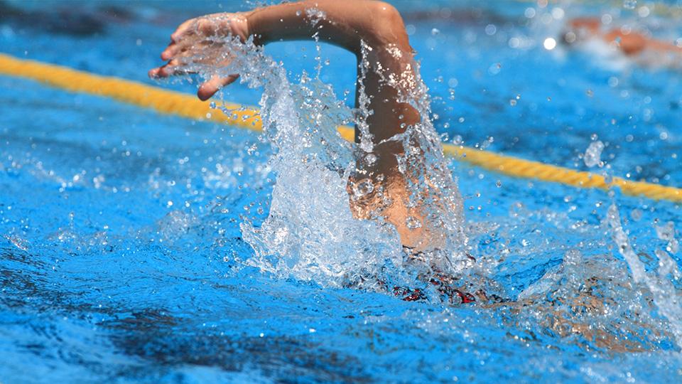リオ五輪競泳ファイナリスト・F選手
